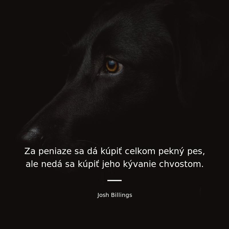 Ja a peniaze - JA Slovensko