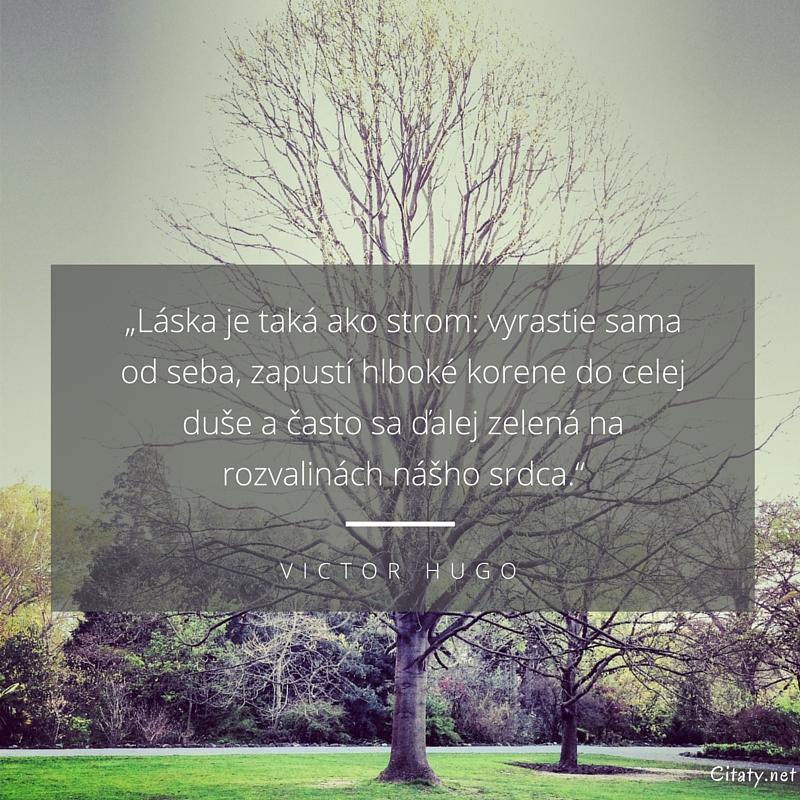 """citaty laska Victor Hugo citát   """"Láska je taká ako strom: vyrastie sama od  citaty laska"""
